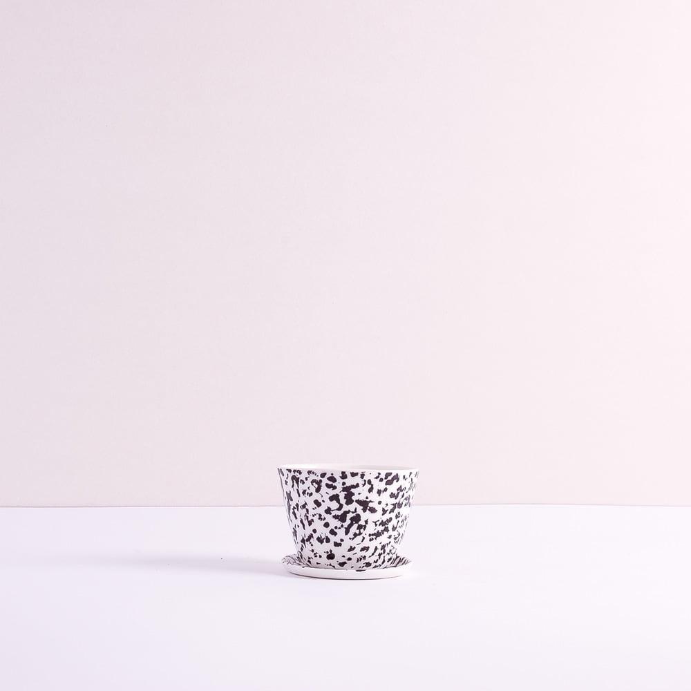 porcelana-fenek4