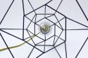 hexal design