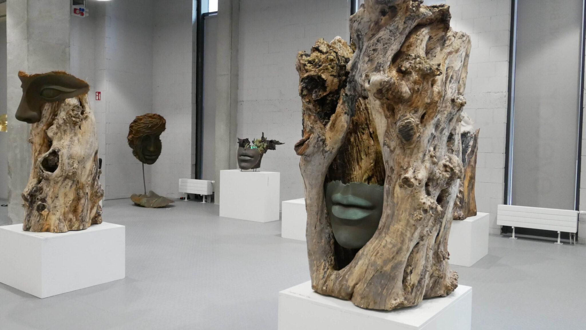galeria totuart